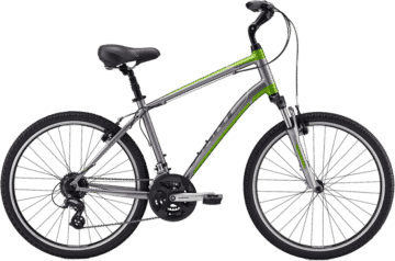 2 Wheel Deluxe Comfort Mountain Bike