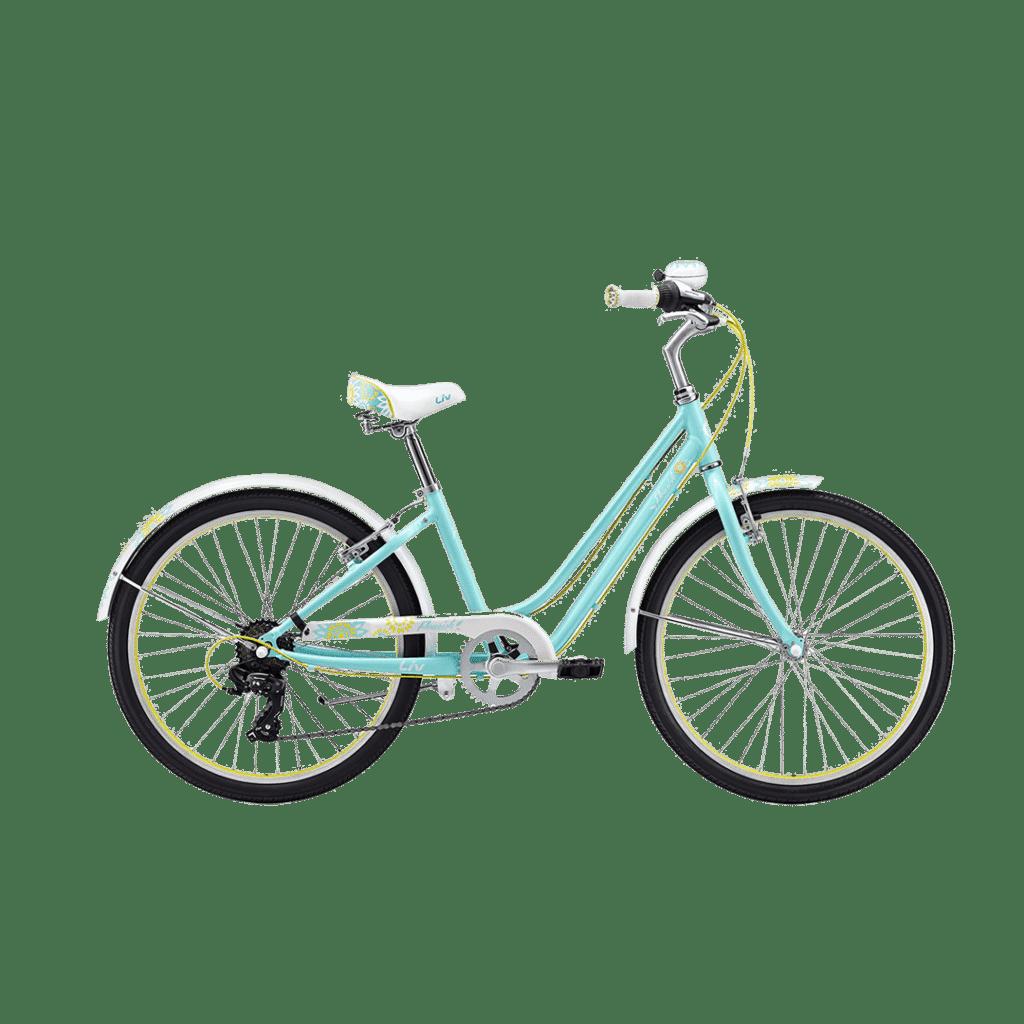 youth bike rental, 2-Wheeled Bike Rental, Bicycle Rental, kids bike rental