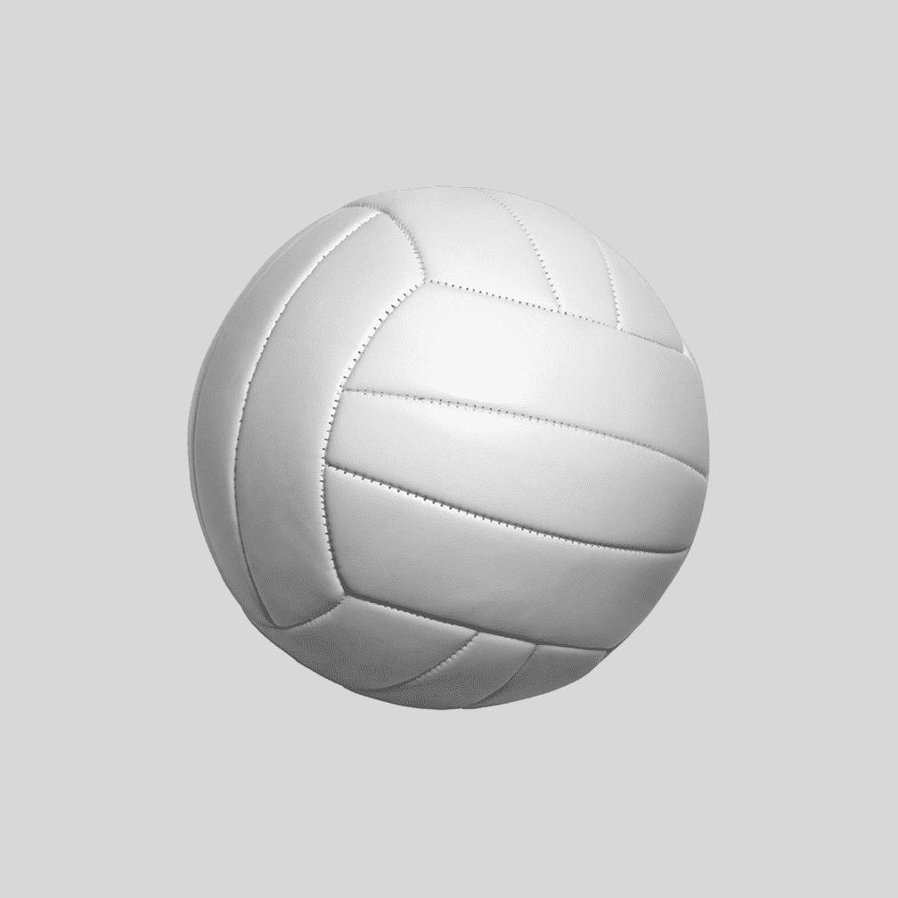 Volleyball Beach Equipment