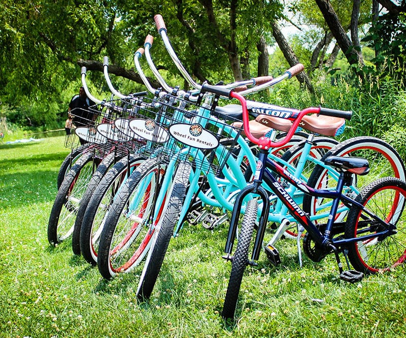 FDR Park Cruiser Bikes for Rent