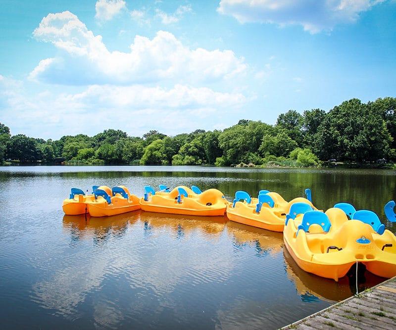 FDR Pedal Boats for Rent Philadelphia