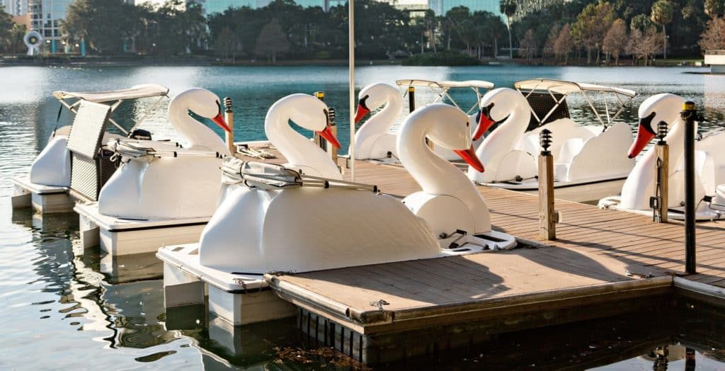 CA Swan Boat Rentals at Lake Balboa Los Angeles