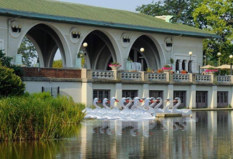 Humboldt Park Chicago Swan Boat Rentals Pedal Boat Rentals