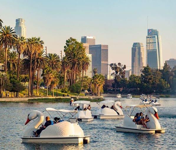Swan Boat Rentals Los Angeles
