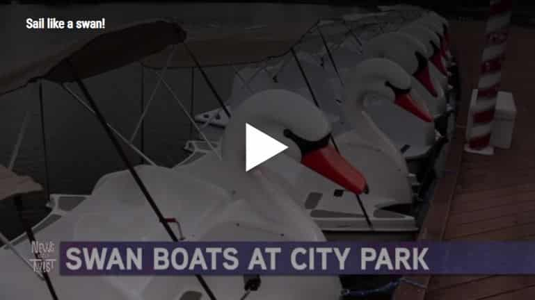 Swan boats at City Park in New Orleans