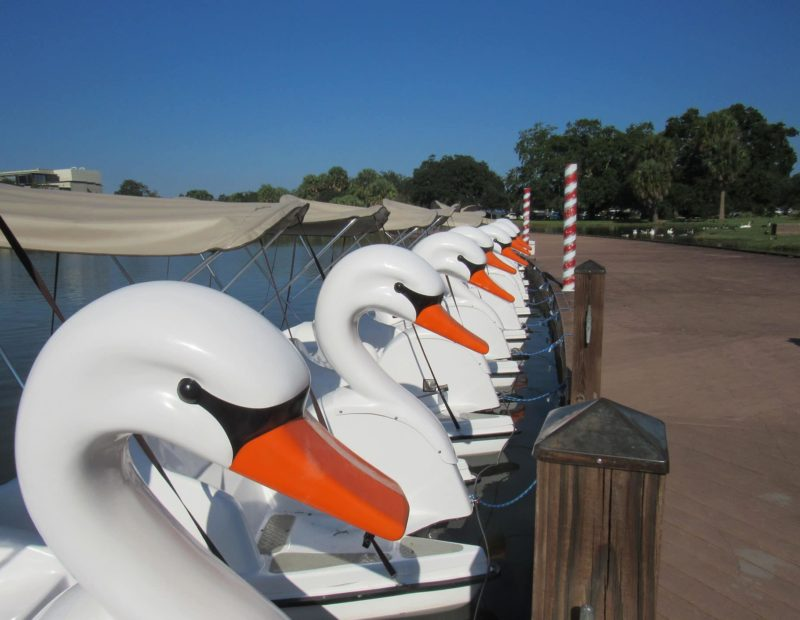 Swan Pedal Boat Rentals on New Orleans City Park's Big Lake