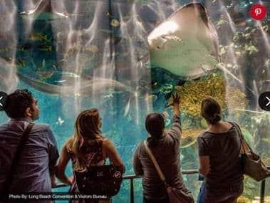 Aquarium in Long Beach, CA